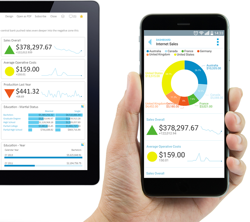 Dashboard Tools Mobile BI